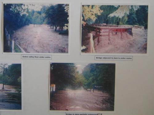 Flooding of Wilket Creek