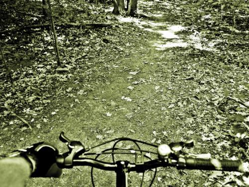 don valley mountain biking