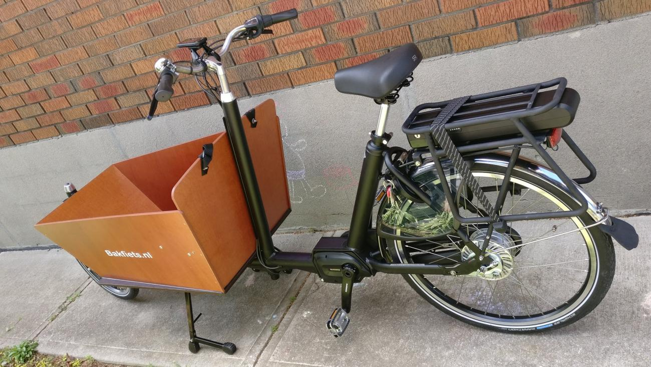 cargo bike in all its glory
